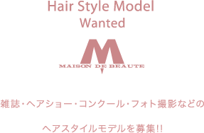 Hair Style Model Wanted
